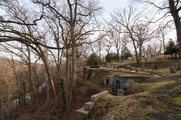 oak-hill-12
